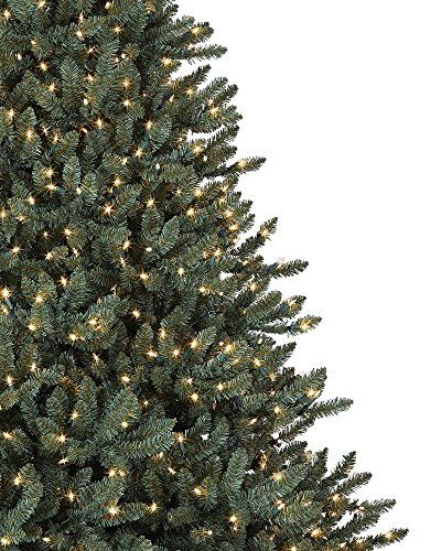 Balsam Hill Classic Blue Spruce Prelit Artificial Christmas Tree, 6 Feet , Clear Lights