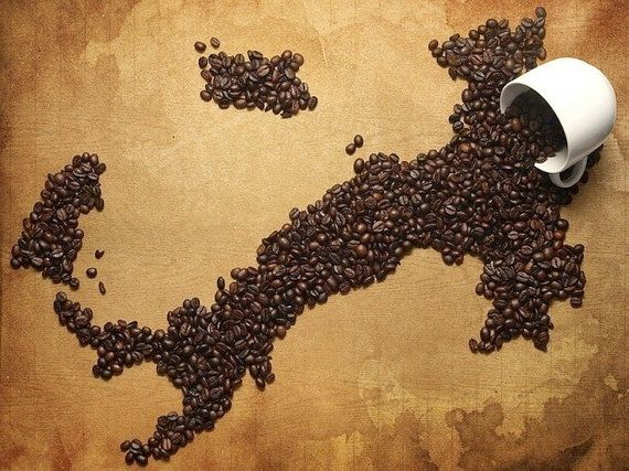 coffee bean italy map wall map italy map mosaic by coffeeworld   u20ac29 00