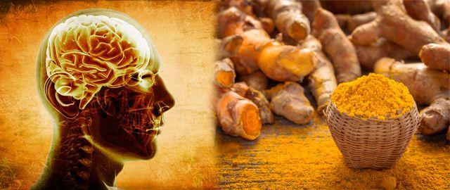 Ergebnisse einer Studie in der Zeitschrift Stem Cell Research & Therapy legen nahe, dass die alte indische Gewürzpflanze Kurkuma das Gehirn nach einer Verletzung reparieren kann. Um zu sehen, w…