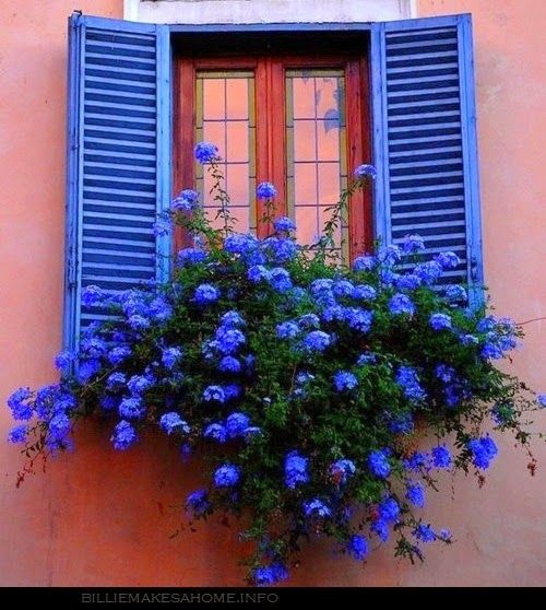 Renée Finberg ' TELLS ALL ' in her blog of her Adventures in Design: Window Boxes & Faux Balconies