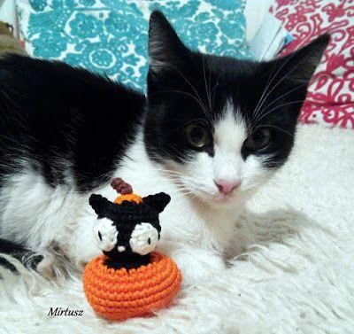 Horgolt tököcskében fekete macska  Mirtusz : Cicajátékok - Halloween
