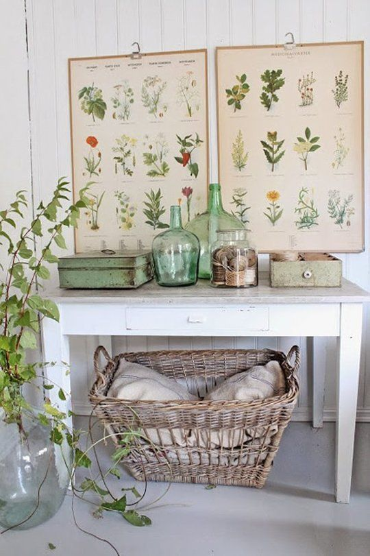 Free Botanical & Science Designs for Decor Projects | Apartment Therapy