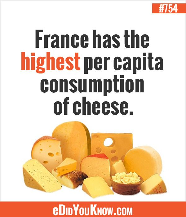 fun facts about food in france food