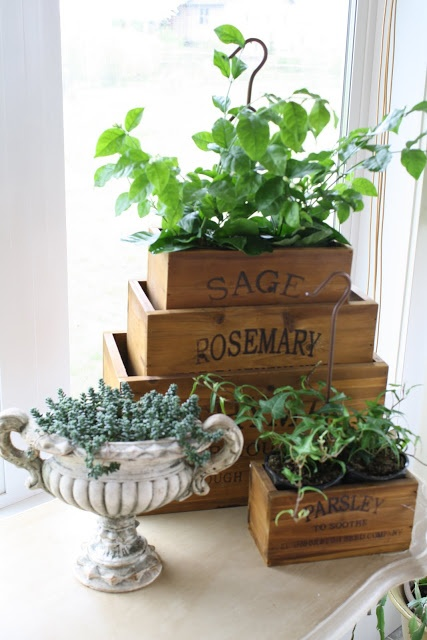 14 best images about herb nesting crate ideas on pinterest Savvy home and garden