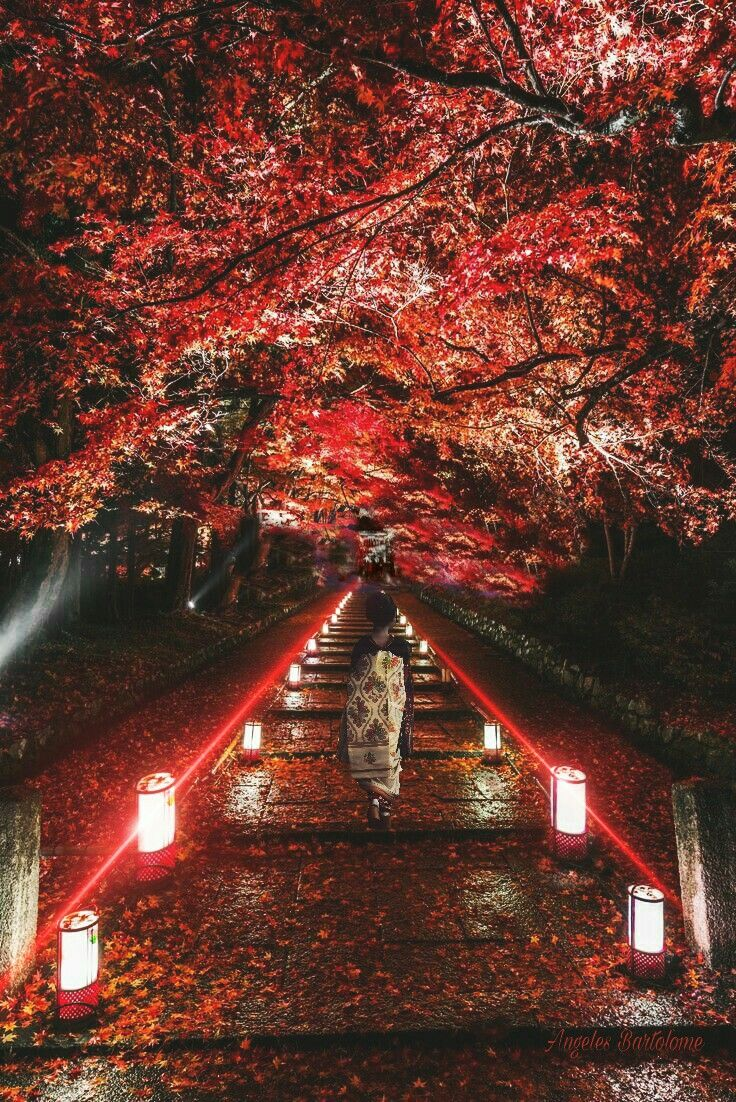 Kyoto Japón Santuario Bishamon-do Jinja