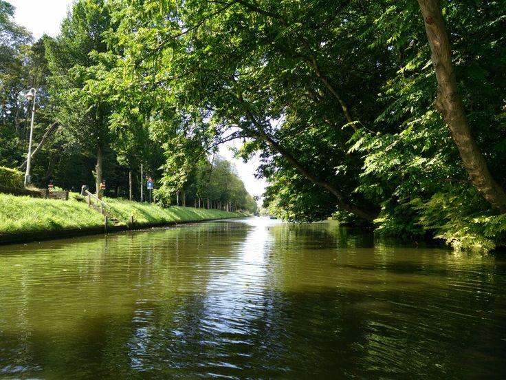 Waterkant in Westbroekpark is een mooi plekje om te roeien, heel veel groen.