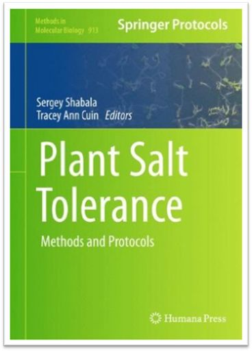 Methods in Molecular Biology Vol.913 - Plant Salt Tolerance Methods and Protocols, 432 Pages | Sách Việt Nam