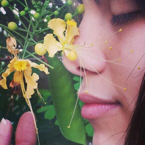 Las flores hacen que asta lo más feo pueda verse lleno de vida