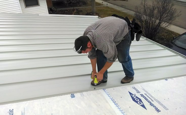 """METAL ROOFING; Here I am doing the most time-consuming task: screwing down every panel, every 24"""". The line of screws is then hidden by the overlapping seam of the next panel, which locks in."""