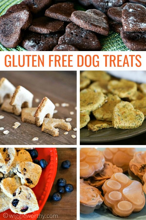 Gluten Free Dog Treat Recipes Dog Biscuit Recipes Dog Treats