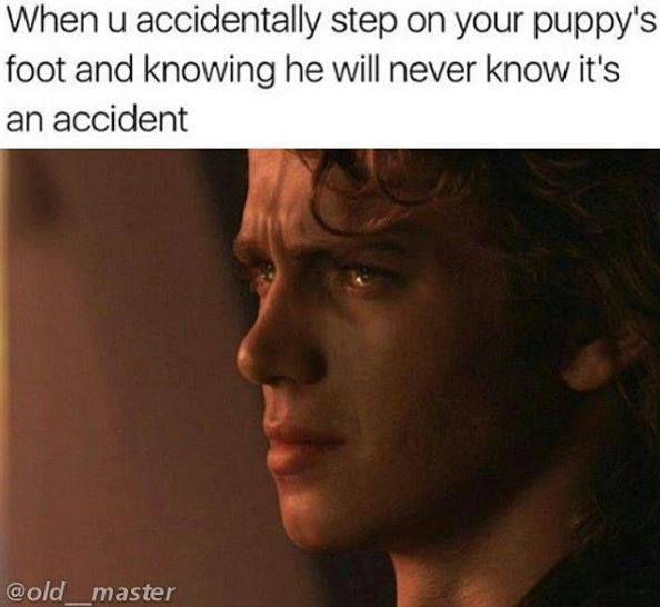 Pin By Allie Kolar On Tumblr Memes Star Wars Memes League Of Legends Memes