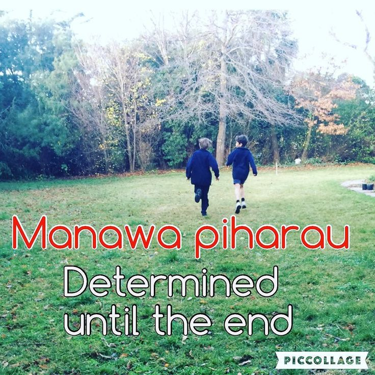 Manawa piharau: Determined until the end. #tewikiotereomāori #maorilanguageweek #tereo #coreeducation