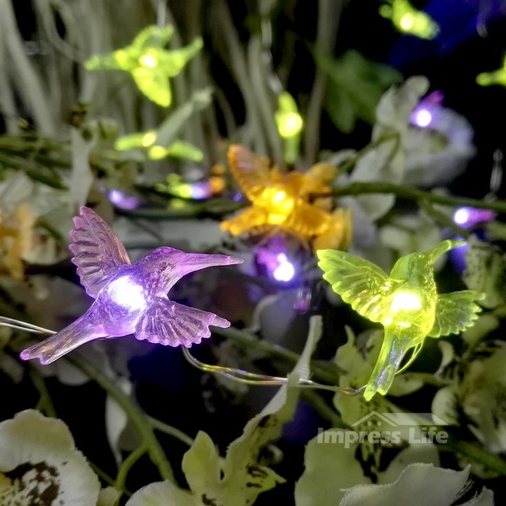 Hummingbird Rope Lights String By IMPRESS LIFE Flexible Copper Wire 10ft 40 LEDs with Remote for Covered Outdoor, Indoor, Wedding, Spring, Baby Shower, Birthday Parties & Home Decorations