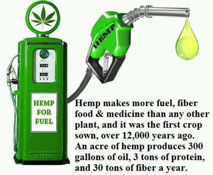 About Hemp Fuel