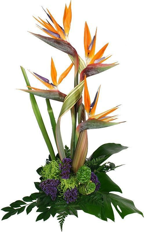 Most Current Cost Free Schone Herbstblumenarrangementsammlungen 62 Popular In 2020 Large Flower Arrangements Church Flower Arrangements Tropical Flower Arrangements