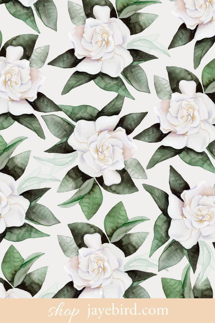 Gardenia Art Design Jaye Bird In 2020 Art Gardenia Flower Drawing