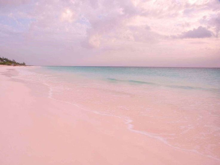 Vacances à la plage : Plage de sable rose, Harbour Island, Bahamas - Robert Harding Picture Library Ltd / Alamy