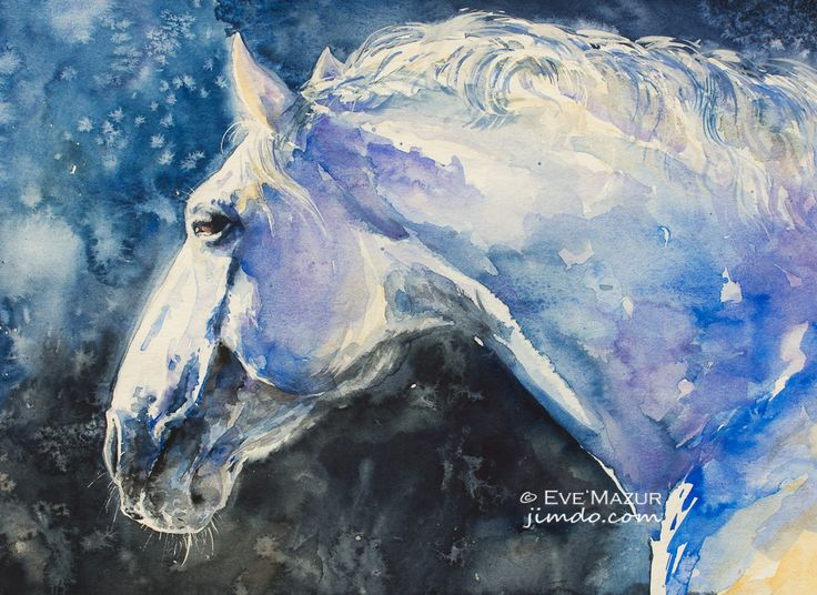 Horse  30x40 watercolors   eve-mazur.jimdo.com
