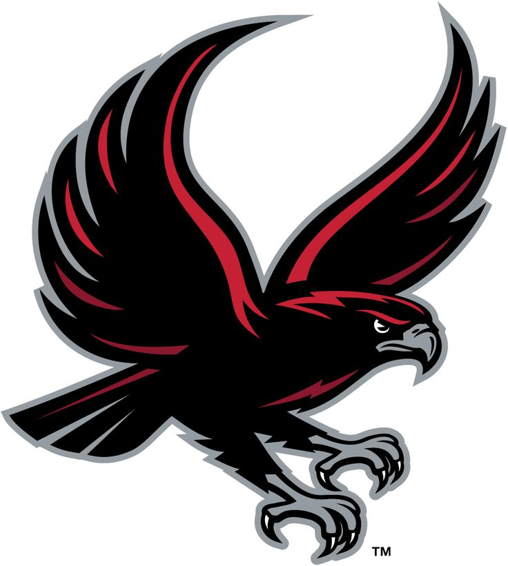 80 best hawksfalcons logos images on pinterest ncaa