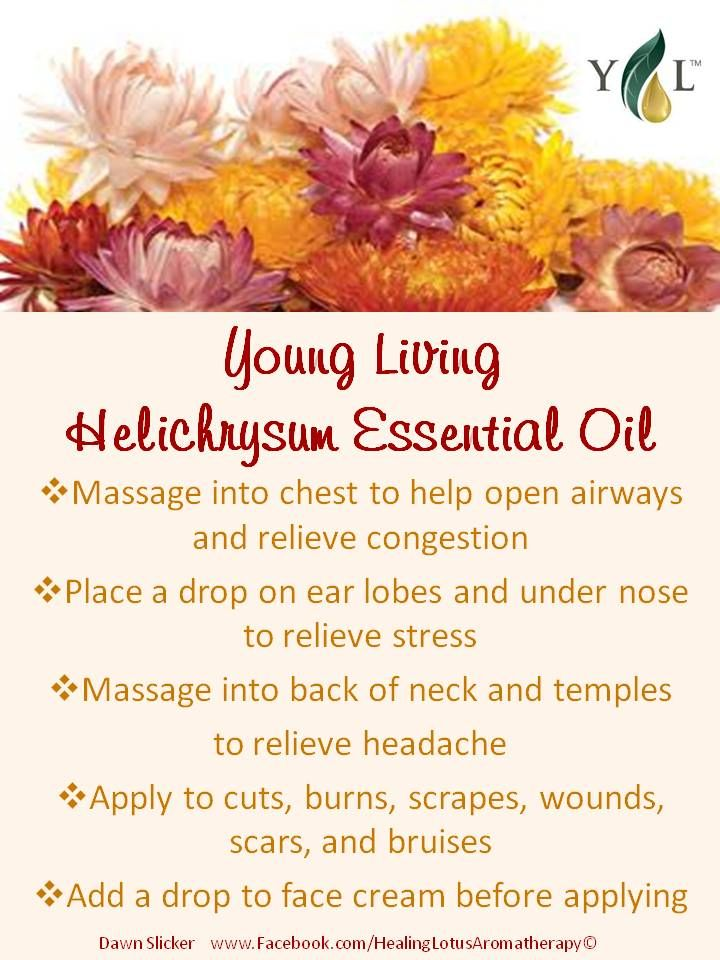 Helichrysum Anybody interested in purchasing the oils or products or learning more about Young Living can email me at siegel_m@bellsouth.net. I would be more than happy to help! Main website www.youngliving.com Or check out the products and order at https://www.youngliving.com/signup/?site=US=1483454=1483454