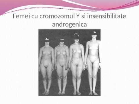 Biologia orientarii sexuale Homosexualitatea este o conditie biologica c...