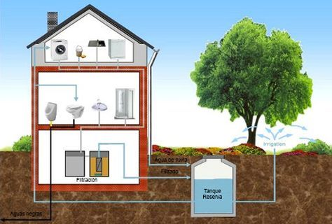 Las aguas grises son aquellas ya utilizadas en la ducha y el lavamanos, así como aquellas aguas de desperdicio de la cocina, que una vez filtradas, son reutilizadas para los inodoros y el riego. El…
