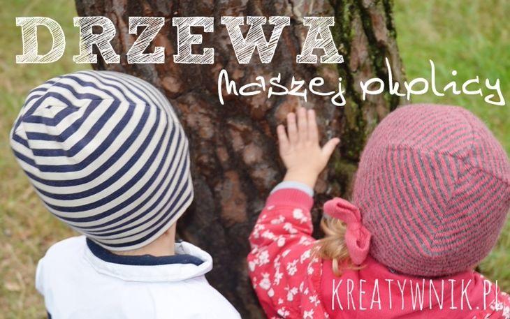 Drzewa naszej okolicy - poszukiwanie drzew z mapą i specjalnie ku temu przygotowanym albumem.