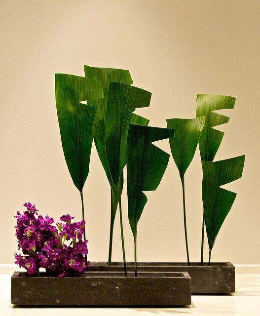 Modern Haran Ikebana...aspidistra leaves