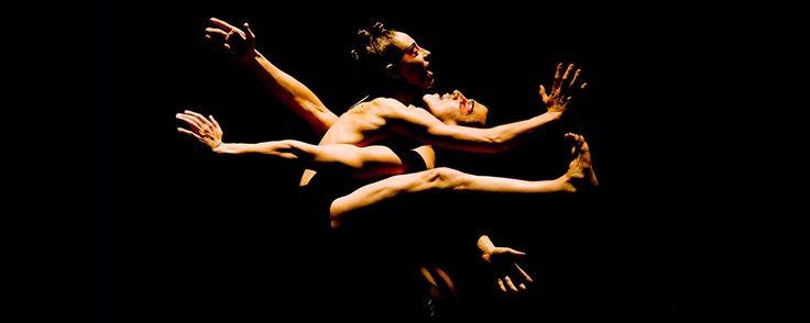 Compagnie Marie Chouinard - Prélude à l'après-midi d'un faune + Le Sacre du printemps (Marie Chouinard) | Danse Danse