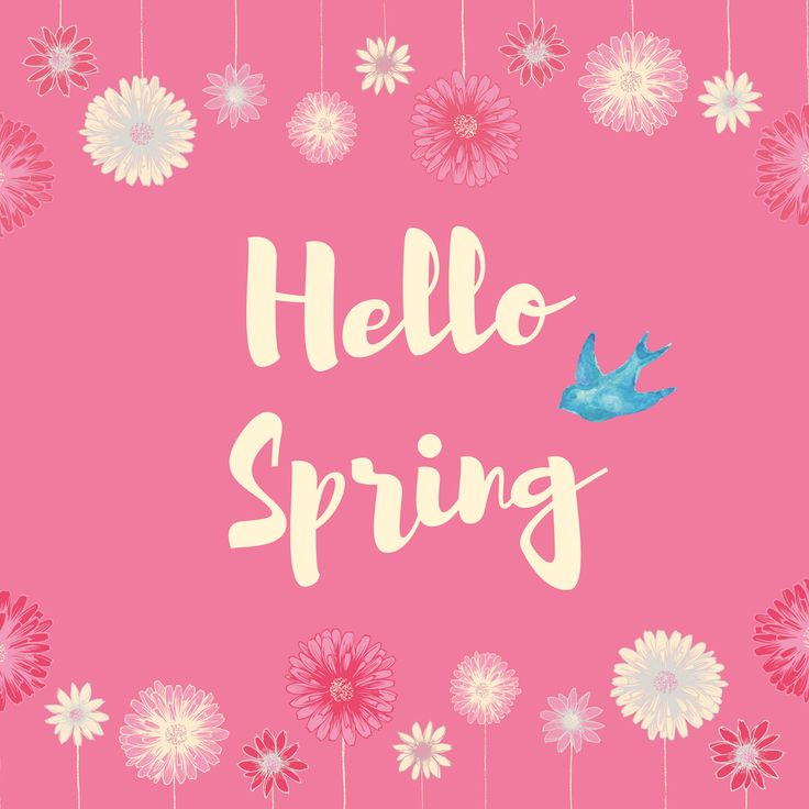 Hello Spring social media greeting template with daisies and a cute bird. Created by ArtnerDluxe in Canva. Customize your own version @ https://www.canva.com/artnerdluxe. Art elements © ArtnerDluxe www.artnerdluxe.com