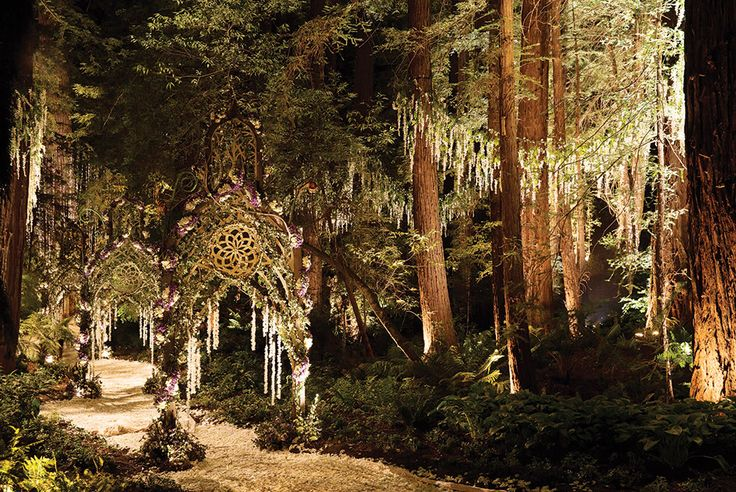 Enchanted Forest beautiful wedding (over the top wedding for the rich and famous)
