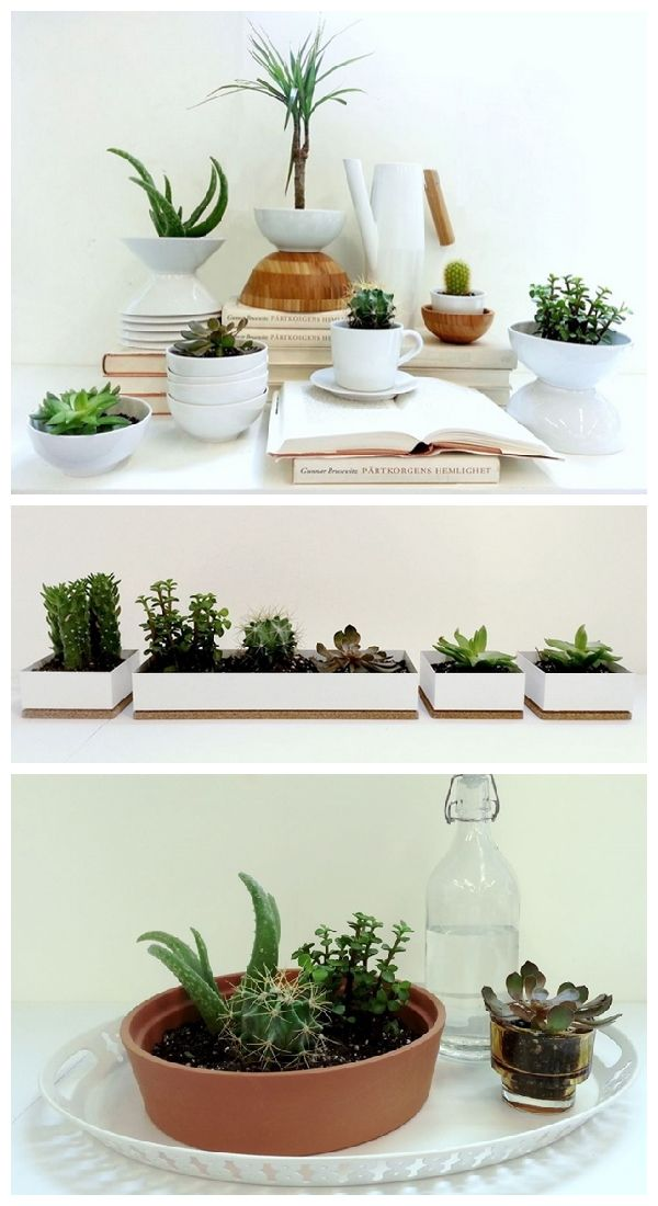 Bring the outdoors in with mini succulents in everyday household items like IKEA cups, bowls and organizers. Check out more ideas on our Design Blog!