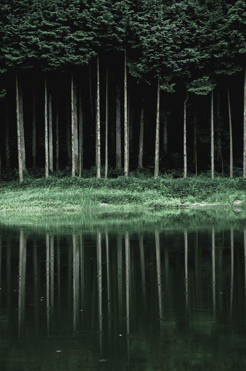 emerald reflections