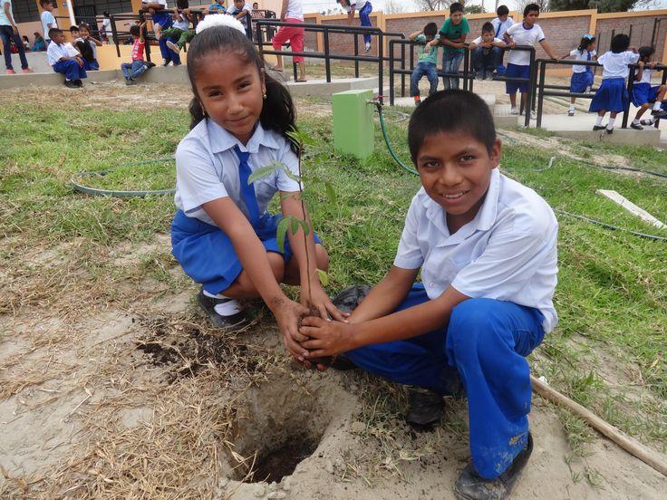 Alumnos de IE Sagrada familia del Pueblo joven del Indio realizando la siembra de plantones.