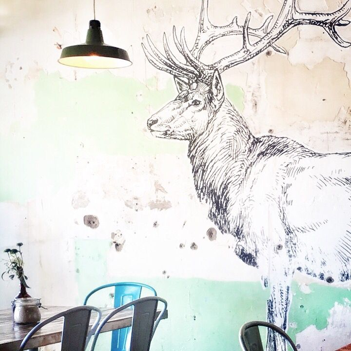 Elk Espresso, Gold Coast