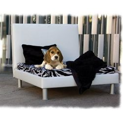 Miami Beach Designer Dog Bed