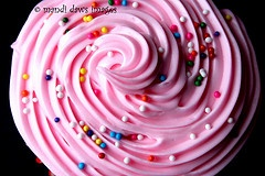 Swirly   #mandidawsimages
