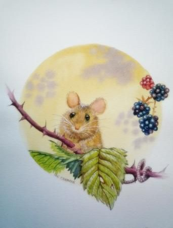 field mouse, Watercolours, Ian Chapman, SAA Professional Members' Galleries