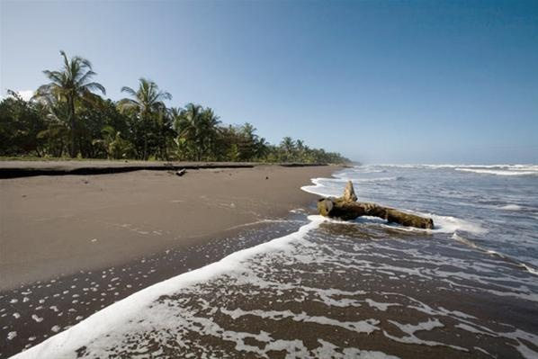 Parque Nacional Tortuguero, Costa Rica (© Gtresonline)
