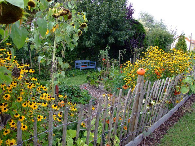Mein fröhlicher Bauerngarten - Bilder und Fotos