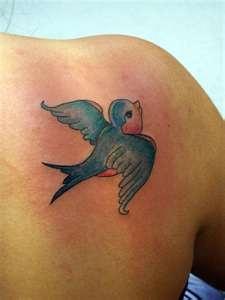 17 ideas about bluebird tattoo on pinterest bluebird tattoo bird tattoos and 3 birds tattoo. Black Bedroom Furniture Sets. Home Design Ideas