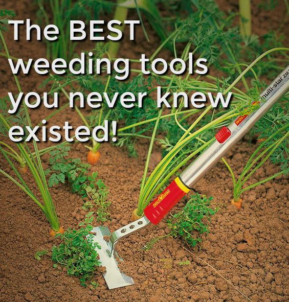 The Best Kept Secret In Weeding Wolf Garten Weeding Tools From Germany You Need To Know About