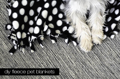 Sew knot!  Just So easy! Many of our kids have made these for themselves... but how about making them for our furry friends and donating to your local humane society?!! Check it out! Dog-I-Y: Easy DIY Fleece Pet Blankets