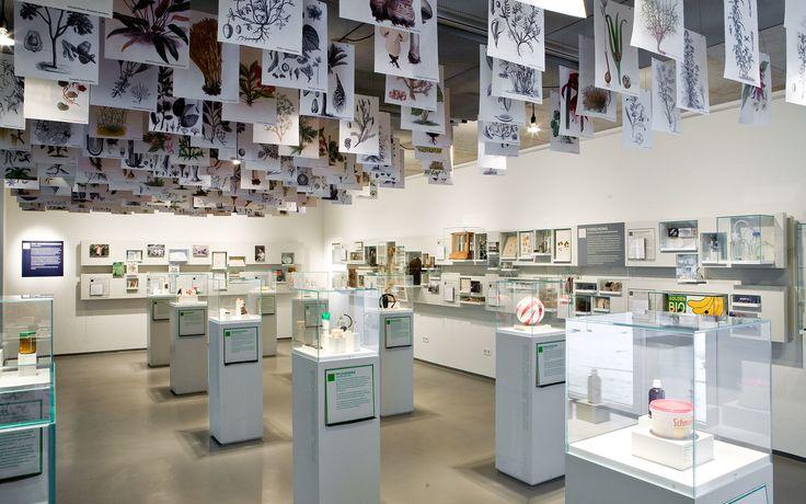 Loki Schmidt Haus | Atelier Brückner