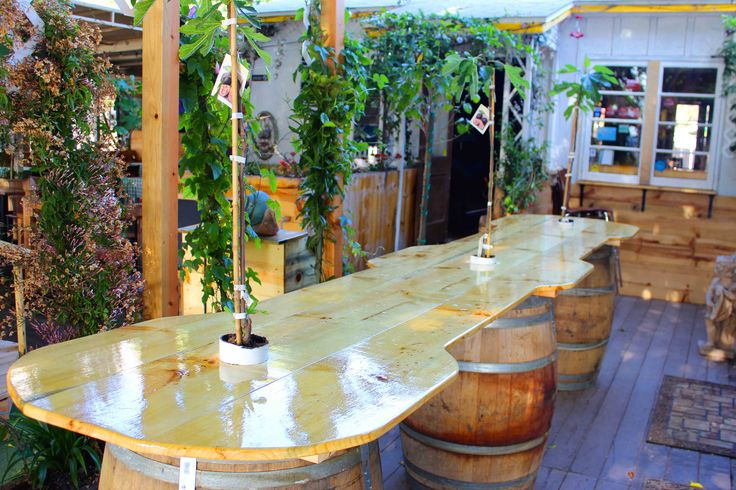 Pacific Beach ‹ Fig Tree Eatery