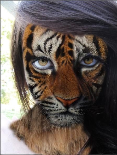 tiger face painting Version Mago2007 by Mago2007 on DeviantArt