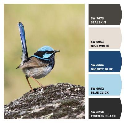 17 Best Images About Remodel Amp Design On Pinterest Paint