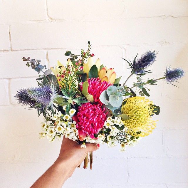 "koolkahlo: ""onehungrymamifood: "" Australian native flowers are so beautiful "" so pretty """