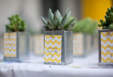 I am always drawn to succulents...maybe I should be living at the ocean...anyhow, these party favors are scrumptious!