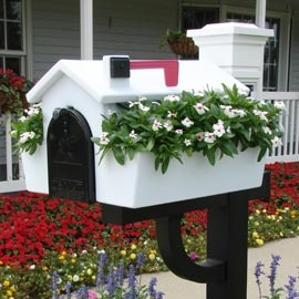 Mailbox planter. Seriously one of the best mailbox ideas I've seen. :)